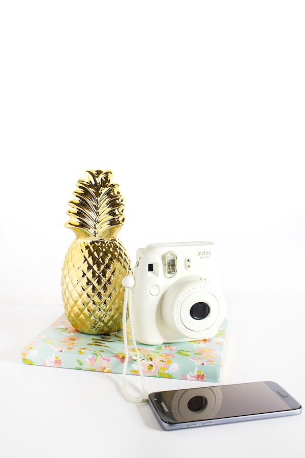 Free Online Stock Photos Ivory Mix Styled Stock Pineapple